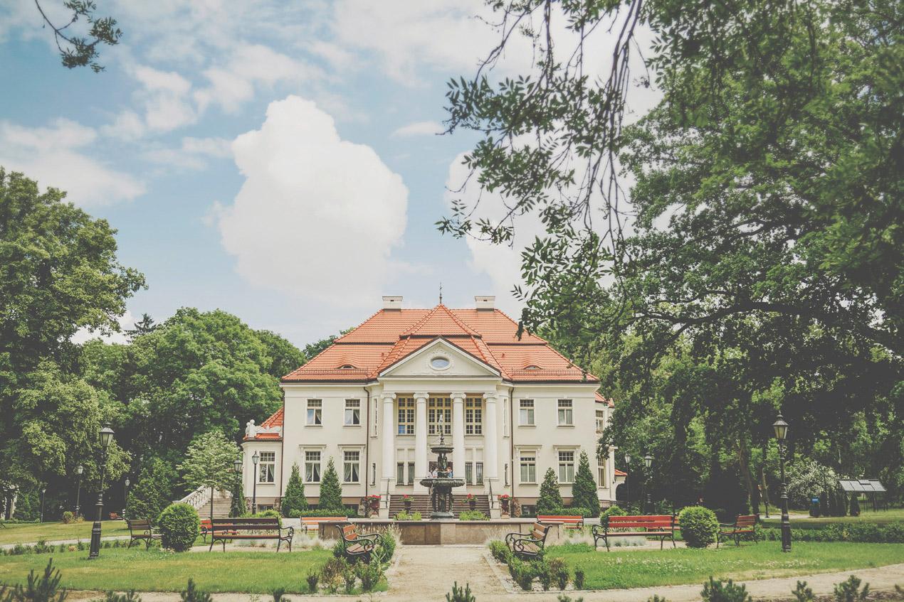 Pałac Tłokinia, ślub, wesele,